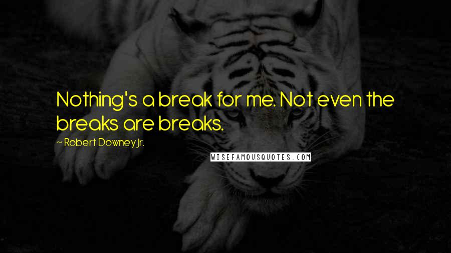 Robert Downey Jr. quotes: Nothing's a break for me. Not even the breaks are breaks.