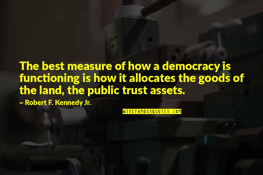 Robert F Kennedy Quotes By Robert F. Kennedy Jr.: The best measure of how a democracy is