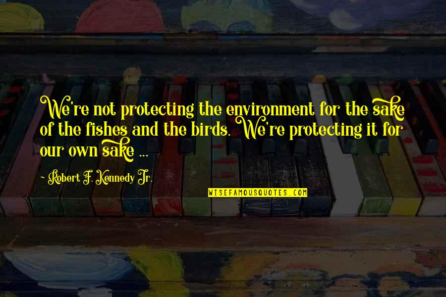 Robert F Kennedy Quotes By Robert F. Kennedy Jr.: We're not protecting the environment for the sake