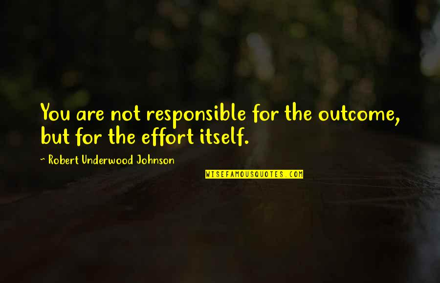 Robert Johnson Quotes By Robert Underwood Johnson: You are not responsible for the outcome, but