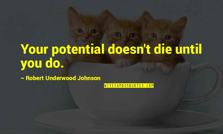 Robert Johnson Quotes By Robert Underwood Johnson: Your potential doesn't die until you do.