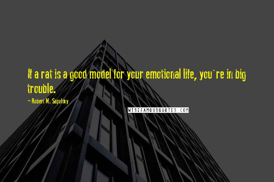 Robert M. Sapolsky quotes: If a rat is a good model for your emotional life, you're in big trouble.