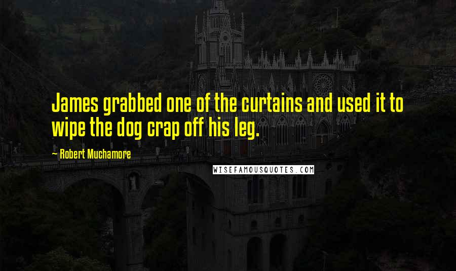 Robert Muchamore quotes: James grabbed one of the curtains and used it to wipe the dog crap off his leg.