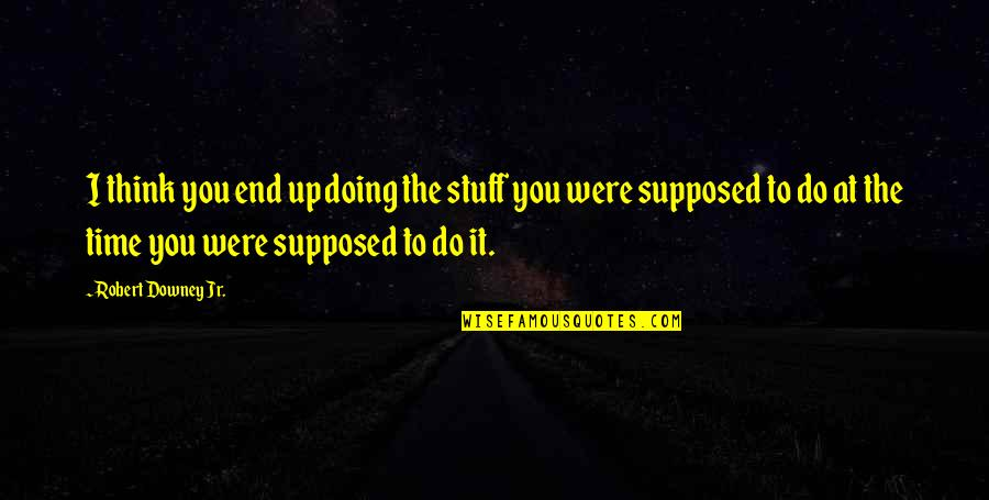 Robert Quotes By Robert Downey Jr.: I think you end up doing the stuff