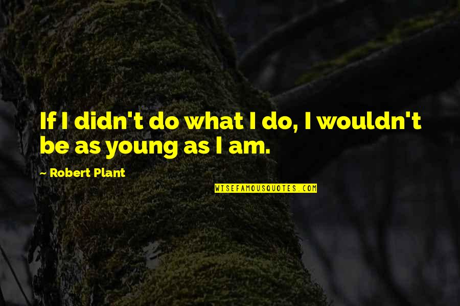 Robert Quotes By Robert Plant: If I didn't do what I do, I