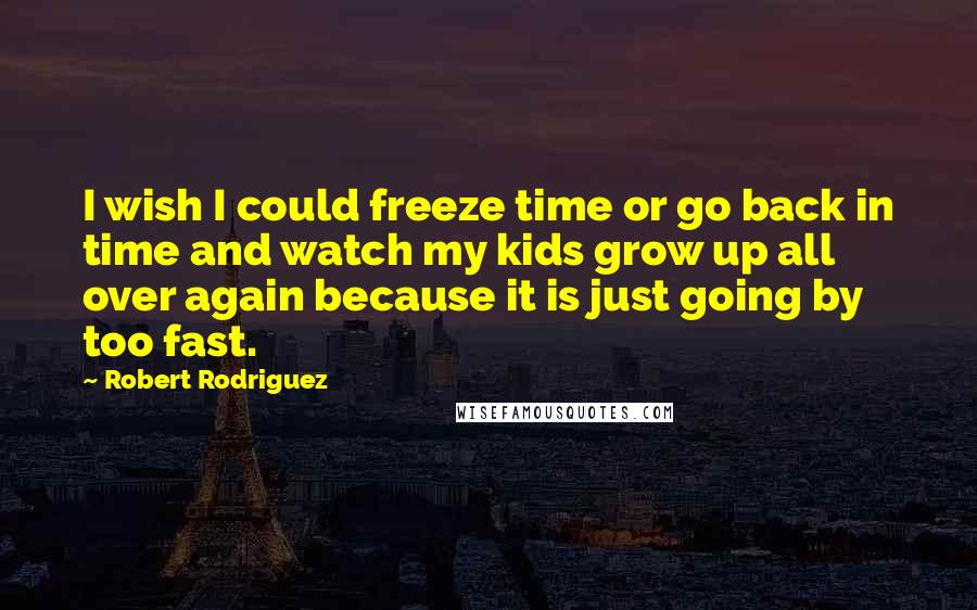 Robert Rodriguez quotes: I wish I could freeze time or go back in time and watch my kids grow up all over again because it is just going by too fast.
