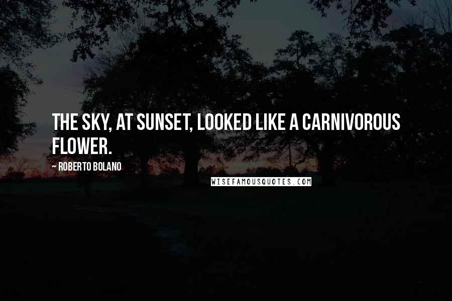 Roberto Bolano quotes: The sky, at sunset, looked like a carnivorous flower.