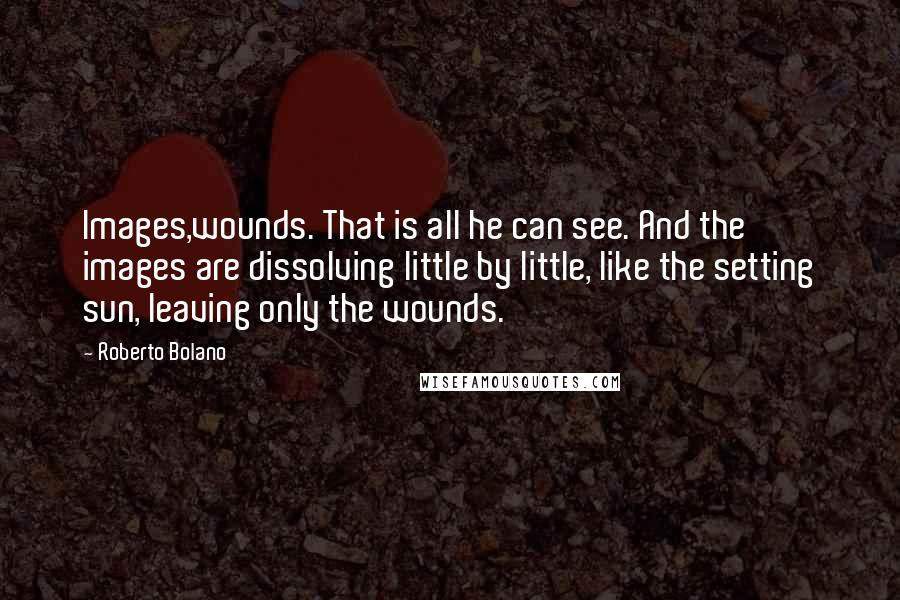 Roberto Bolano quotes: Images,wounds. That is all he can see. And the images are dissolving little by little, like the setting sun, leaving only the wounds.
