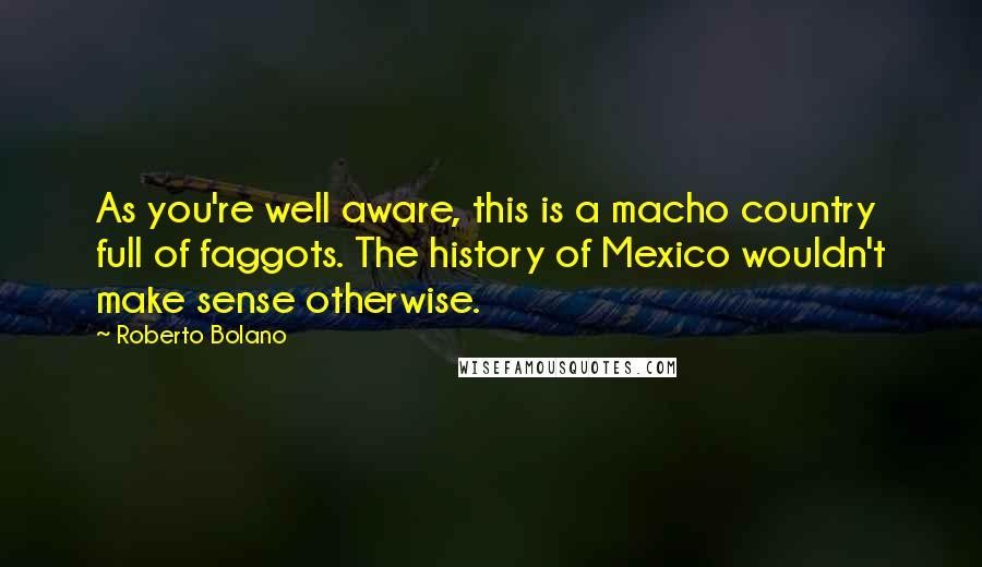 Roberto Bolano quotes: As you're well aware, this is a macho country full of faggots. The history of Mexico wouldn't make sense otherwise.