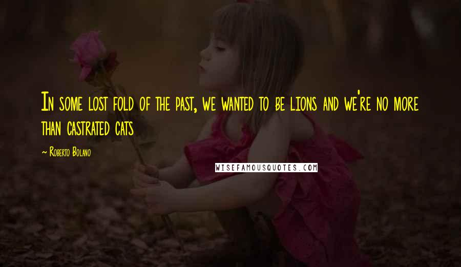 Roberto Bolano quotes: In some lost fold of the past, we wanted to be lions and we're no more than castrated cats
