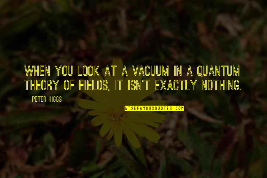 Rocher Quotes By Peter Higgs: When you look at a vacuum in a