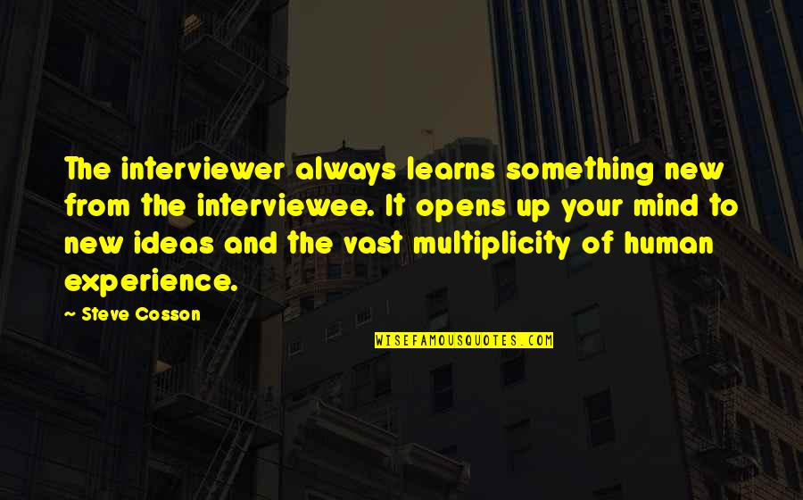 Role Model Manager Quotes By Steve Cosson: The interviewer always learns something new from the