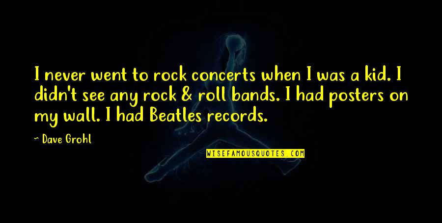 Roll On Quotes By Dave Grohl: I never went to rock concerts when I