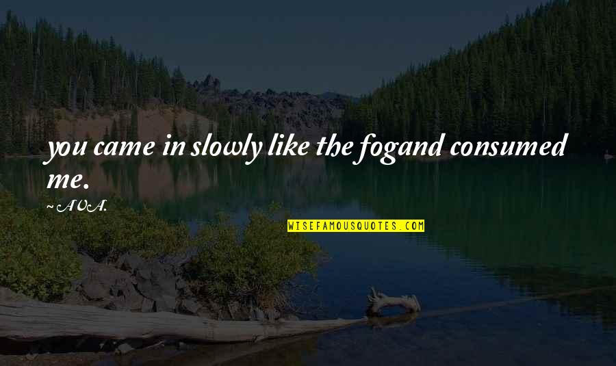 Romantic Poetry And Quotes By AVA.: you came in slowly like the fogand consumed