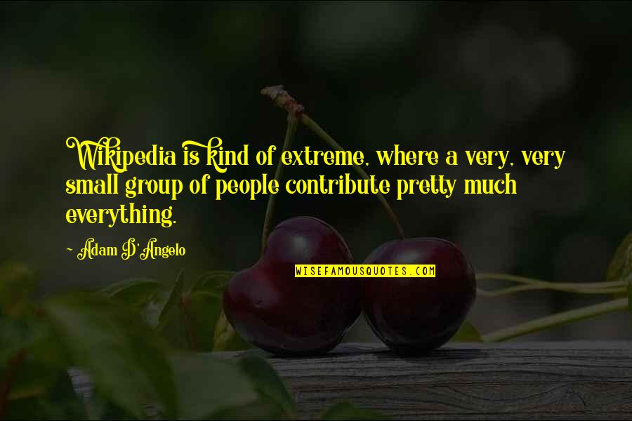 Romanticas Quotes By Adam D'Angelo: Wikipedia is kind of extreme, where a very,