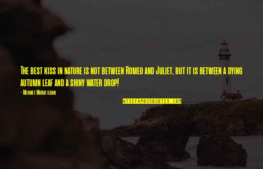 Romeo Dying For Juliet Quotes Top 12 Famous Quotes About Romeo