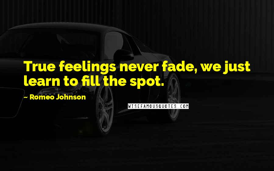 Romeo Johnson quotes: True feelings never fade, we just learn to fill the spot.