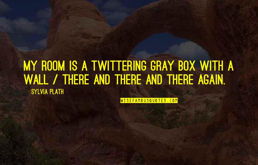 Room Wall Quotes By Sylvia Plath: My room is a twittering gray box with