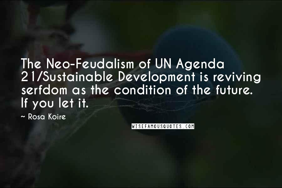 Rosa Koire quotes: The Neo-Feudalism of UN Agenda 21/Sustainable Development is reviving serfdom as the condition of the future. If you let it.