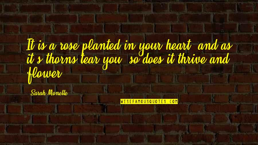 Rose And Heart Quotes By Sarah Monette: It is a rose planted in your heart,