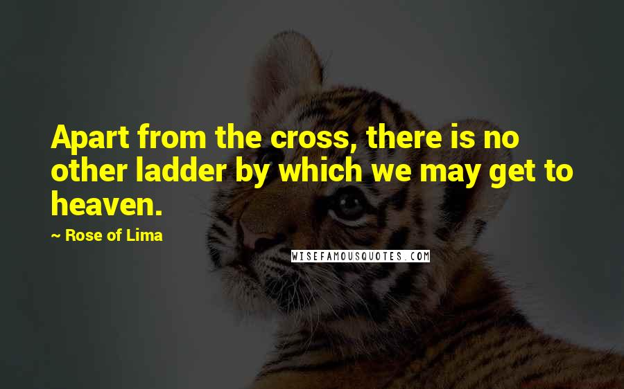 Rose Of Lima quotes: Apart from the cross, there is no other ladder by which we may get to heaven.