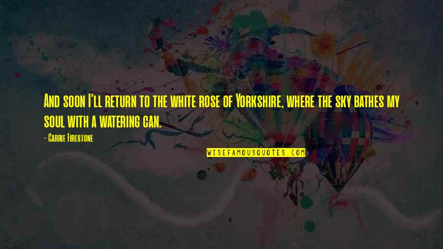 Rose With Quotes By Carrie Firestone: And soon I'll return to the white rose