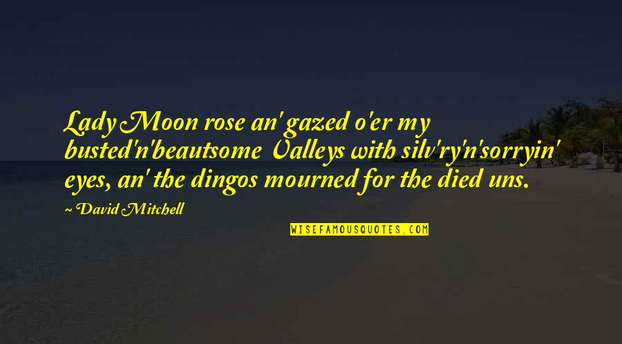 Rose With Quotes By David Mitchell: Lady Moon rose an' gazed o'er my busted'n'beautsome