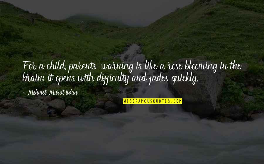 Rose With Quotes By Mehmet Murat Ildan: For a child, parents' warning is like a