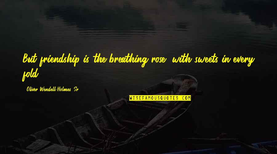 Rose With Quotes By Oliver Wendell Holmes, Sr.: But friendship is the breathing rose, with sweets