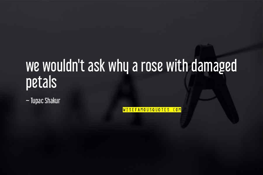 Rose With Quotes By Tupac Shakur: we wouldn't ask why a rose with damaged