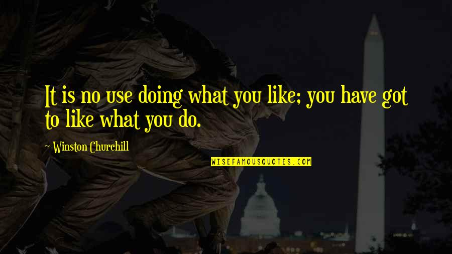 Rosebush In Scarlet Letter Quotes By Winston Churchill: It is no use doing what you like;