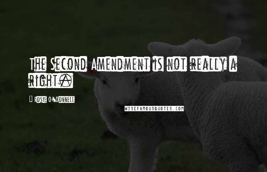 Rosie O'Donnell quotes: The Second Amendment is not really a right.