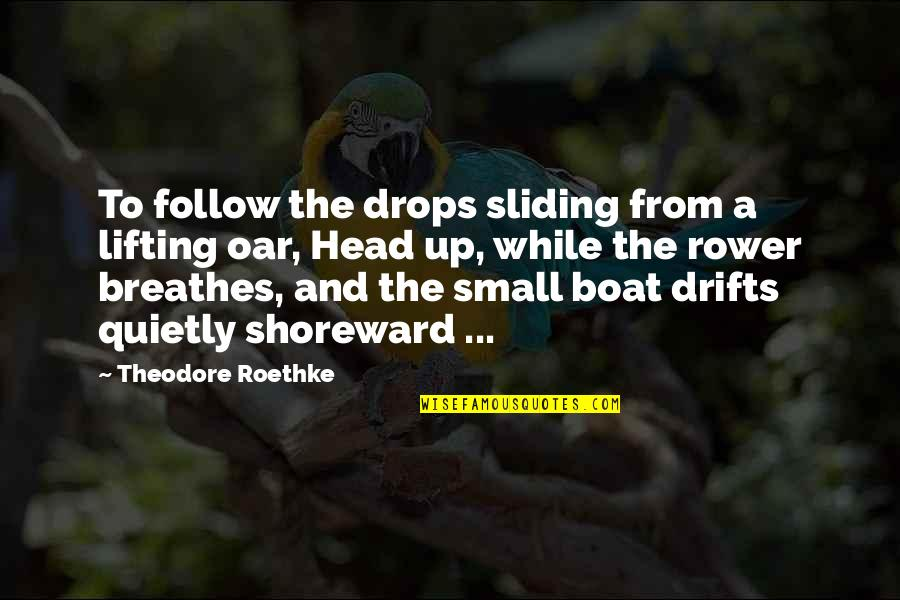 Rower Quotes By Theodore Roethke: To follow the drops sliding from a lifting