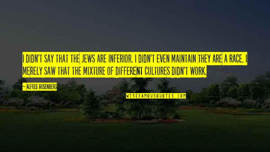 Rowntree Quotes By Alfred Rosenberg: I didn't say that the Jews are inferior.