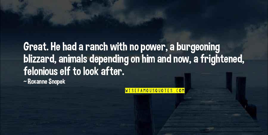 Roxanne Quotes By Roxanne Snopek: Great. He had a ranch with no power,