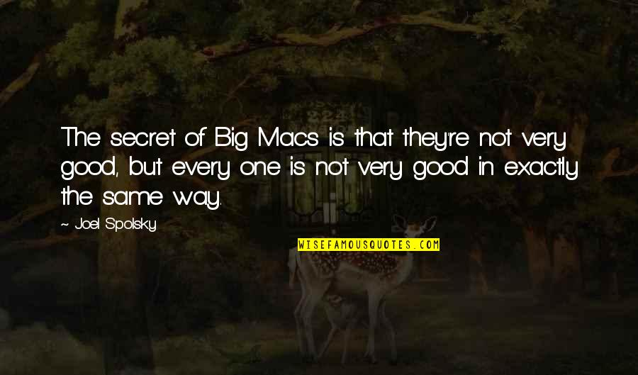 Roxette Love Quotes By Joel Spolsky: The secret of Big Macs is that they're