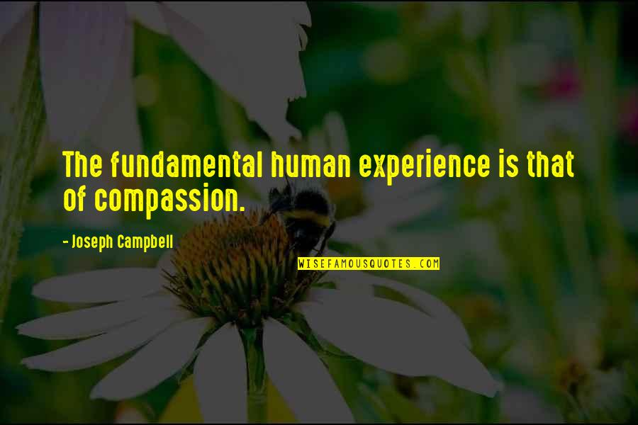 Ruby Daly Quotes By Joseph Campbell: The fundamental human experience is that of compassion.