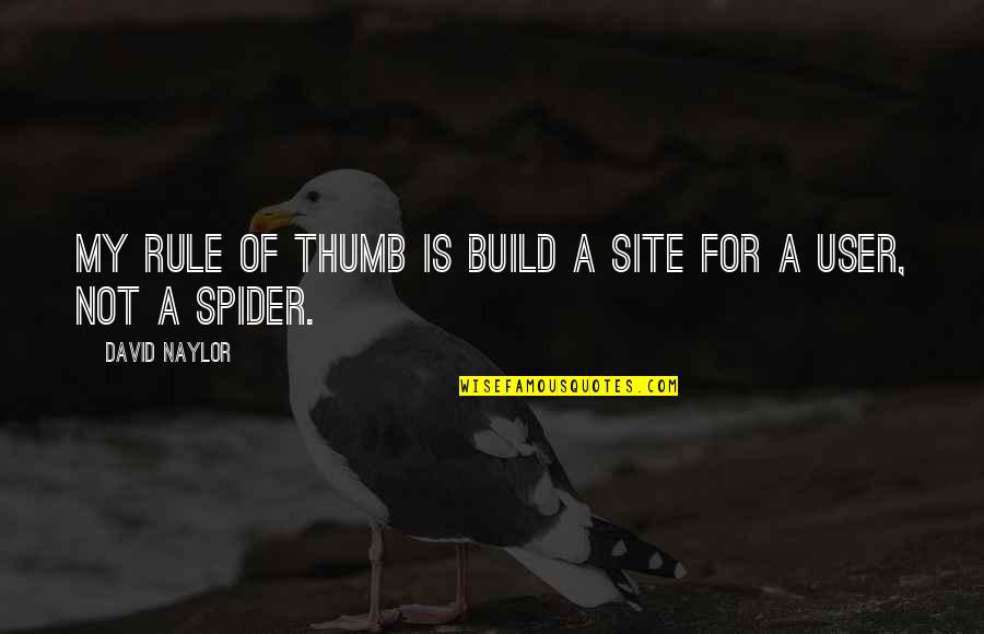 Rule Of Thumb Quotes By David Naylor: My rule of thumb is build a site