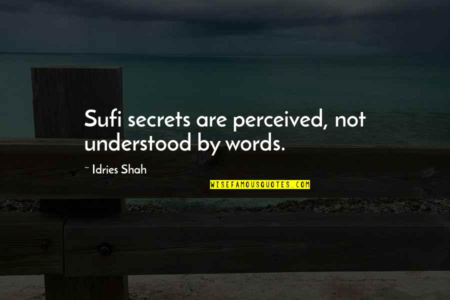 Rumi Quotes By Idries Shah: Sufi secrets are perceived, not understood by words.