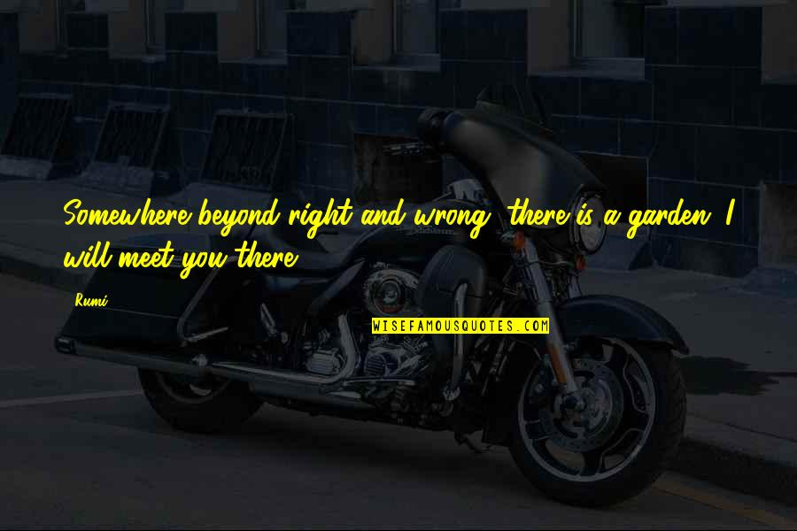 Rumi Quotes By Rumi: Somewhere beyond right and wrong, there is a