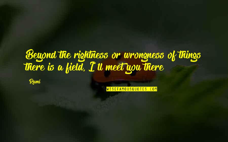 Rumi Quotes By Rumi: Beyond the rightness or wrongness of things there
