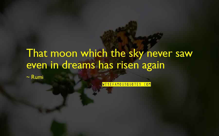 Rumi Quotes By Rumi: That moon which the sky never saw even