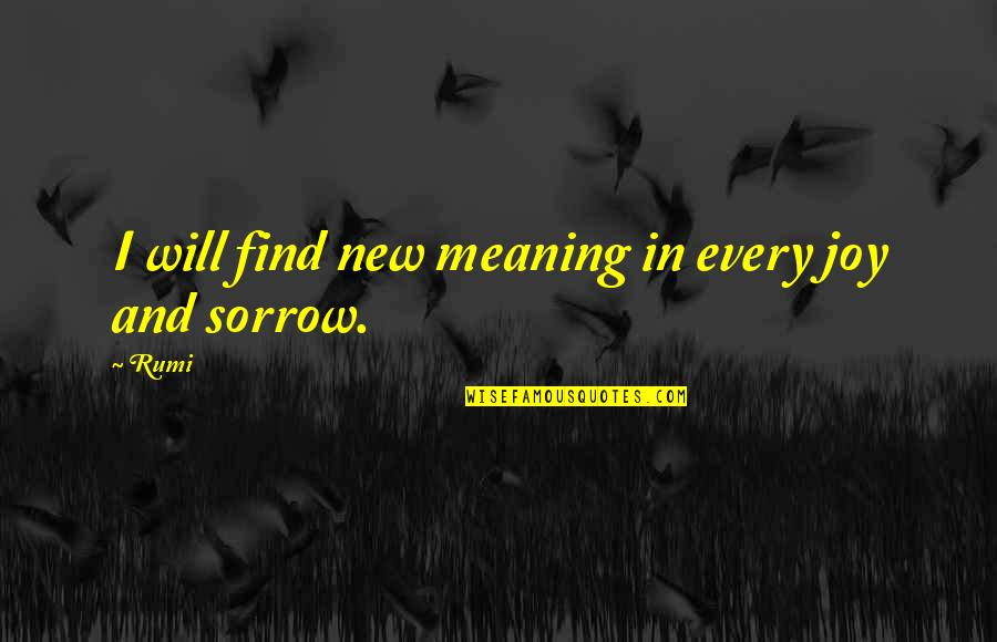 Rumi Quotes By Rumi: I will find new meaning in every joy