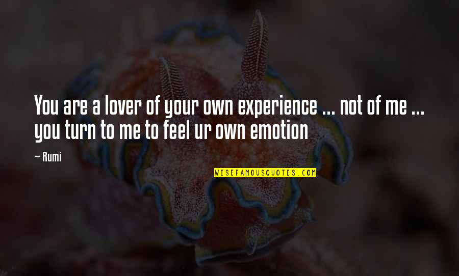 Rumi Quotes By Rumi: You are a lover of your own experience
