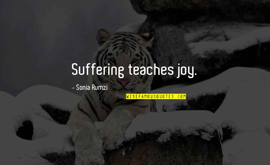 Rumzi Quotes By Sonia Rumzi: Suffering teaches joy.