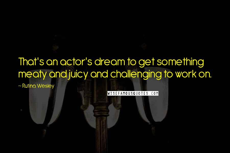 Rutina Wesley quotes: That's an actor's dream to get something meaty and juicy and challenging to work on.