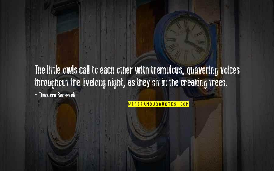 Ruut Quotes By Theodore Roosevelt: The little owls call to each other with