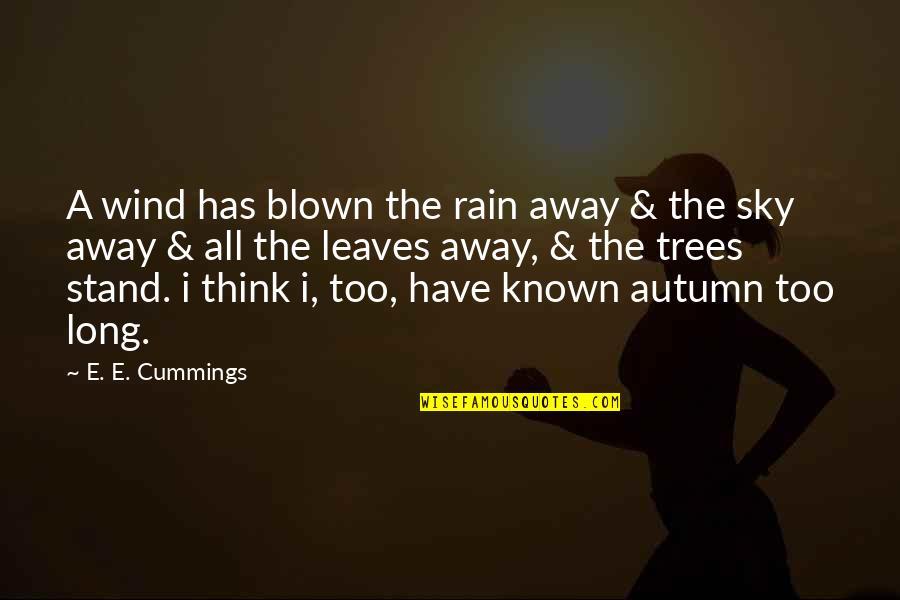 Ryusei No Kizuna Quotes By E. E. Cummings: A wind has blown the rain away &