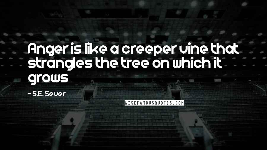 S.E. Sever quotes: Anger is like a creeper vine that strangles the tree on which it grows
