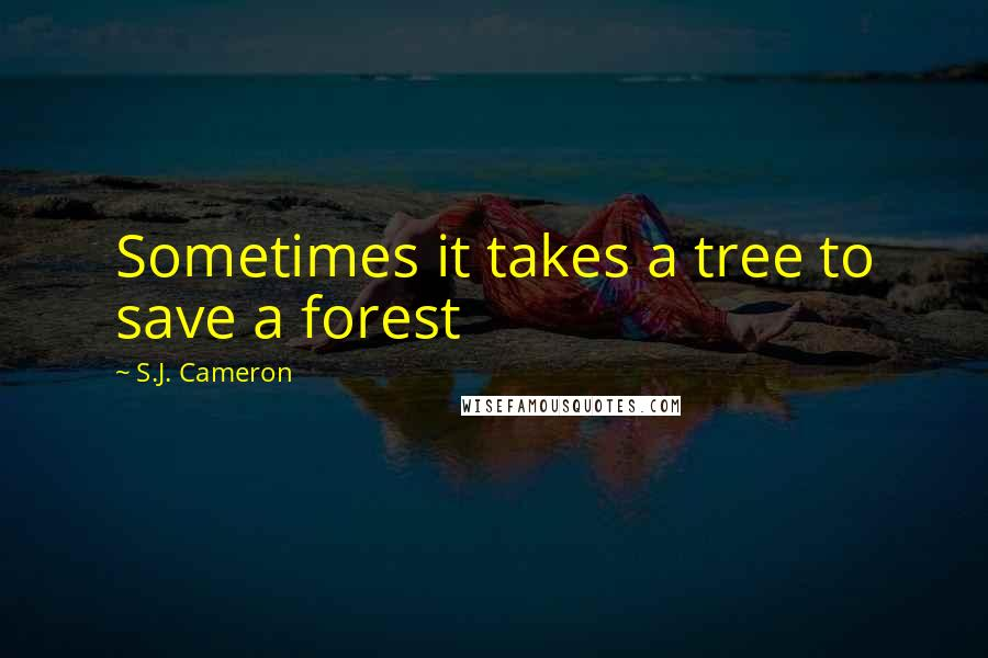 S.J. Cameron quotes: Sometimes it takes a tree to save a forest